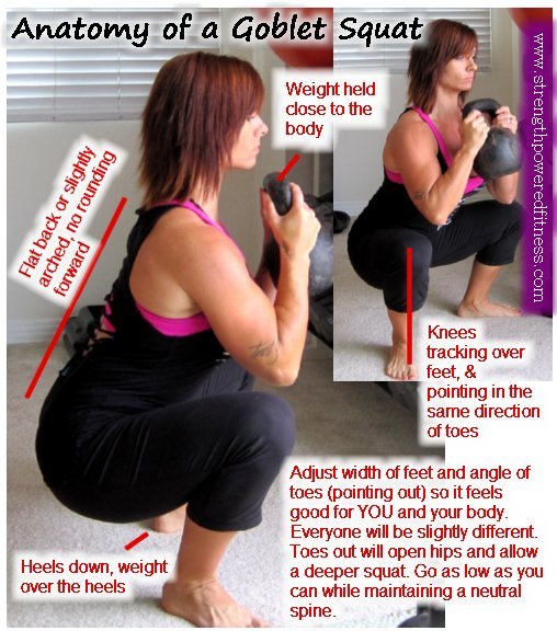 anatomy of goblet squat